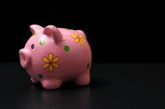 Pink Pig Piggy Bank Stock Photo