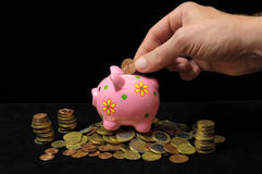Pink Pig Piggy Bank Royalty Free Stock Photography