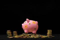 Pink Pig Piggy Bank Royalty Free Stock Photos