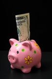 Pink Pig Piggy Bank Royalty Free Stock Images