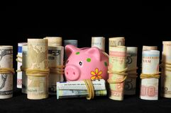 Pink Pig Piggy Bank Stock Images
