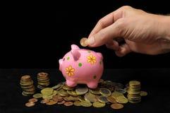 Pink Pig Piggy Bank Stock Images