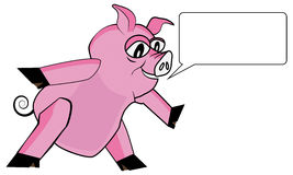 Pink pig speaking Stock Photo