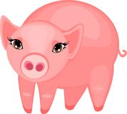 Pink pig Stock Image