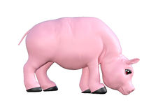 Pink Pig on White Royalty Free Stock Photos