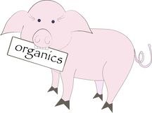 Pink pig with white plate Organics on white Royalty Free Stock Image