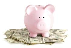 Pink piggy Stock Photo