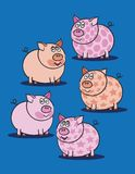 Pink piggy against blue Stock Image