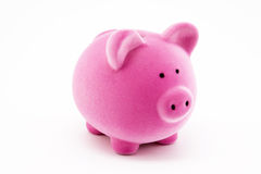 Pink piggy bank Stock Photos