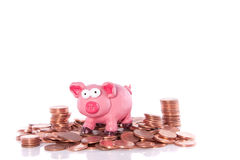 A pink piggy bank Royalty Free Stock Image