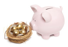 Pink piggy bank. And golden egg in the nest Royalty Free Stock Images