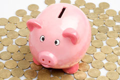 Pink piggy-bank Royalty Free Stock Photo