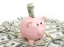 Free Pink Piggy Bank Royalty Free Stock Photography - 7718937