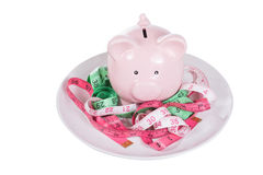 Pink piggy bank amongst tangled measuring tapes. Pink piggy bank amongst three colorful tangled measuring tapes in inches on a plate in a conceptual image Stock Photography
