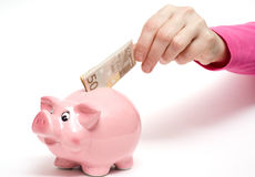 Pink piggy bank with bank note Stock Photos