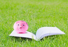 Pink piggy bank. On booklet for concepts in design work Stock Photography