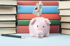 Pink piggy bank with books and money on wooden background. Concept of funding education.