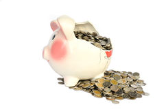 Pink piggy bank broken with money Stock Images