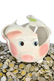 Pink piggy bank broken with money Stock Photo
