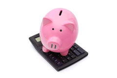 Pink Piggy Bank on Calculator. Pink piggy bank is on the calculator on white background Stock Photos