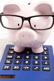 Pink piggy bank and calculator Stock Images