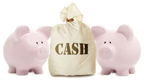 Pink piggy bank and cash Stock Images