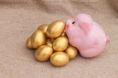 Pink piggy bank climb on heap of golden easter egg Stock Images