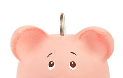 Pink piggy bank, with coin Stock Image