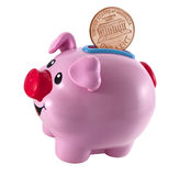 Pink  piggy bank and a coin falling in it Royalty Free Stock Photos