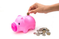 Pink piggy bank with coin for save your money Royalty Free Stock Photography