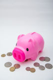 Pink piggy bank with coin for save your money Royalty Free Stock Photos
