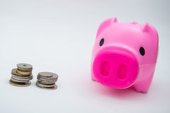 Pink piggy bank with coin for save your money Royalty Free Stock Image