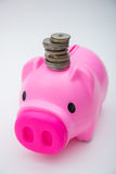 Pink piggy bank with coin for save your money Stock Photos