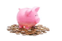 Pink Piggy Bank and Coin. At the White Background Stock Photo