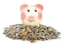 Pink piggy bank with coins Royalty Free Stock Images
