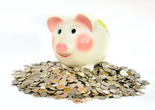 Pink piggy bank with coins Stock Photo