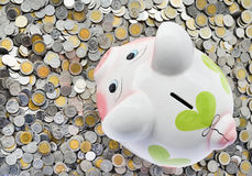 Pink piggy bank with coins Royalty Free Stock Photography
