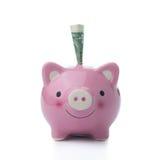 Pink piggy bank Royalty Free Stock Photo