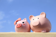 Pink piggy bank couple Royalty Free Stock Images