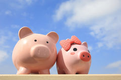 Pink piggy bank couple Stock Photography