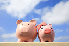 Pink piggy bank couple Royalty Free Stock Image