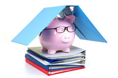 Pink piggy bank and documents Royalty Free Stock Photos