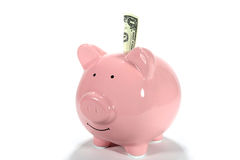 Pink Piggy Bank With Dollar Stock Photography