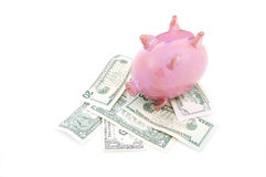 Pink piggy bank on dollars Royalty Free Stock Photo