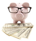 Pink piggy bank Royalty Free Stock Photos