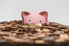 Piggy Bank Drowning in Pennies stock photos