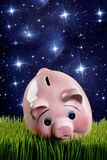 Pink Piggy Bank. Royalty Free Stock Photography