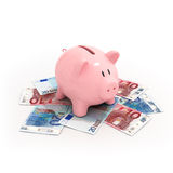 Pink piggy bank on euro bills. Isolated on white bacground Royalty Free Stock Image