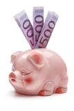 Pink piggy bank with five hundred euro banknotes. Royalty Free Stock Images