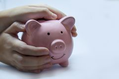 Pink piggy Bank in the hands of the child. royalty free stock image